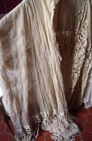 Pair of lace curtains