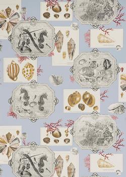 Aquarius wall paper