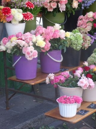 Flowers market in Geneva