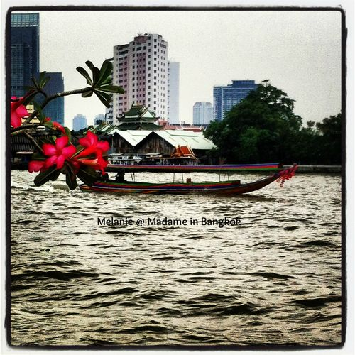 Long tail boat on the chao Phraya River Bangkok