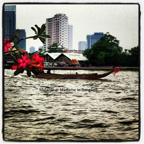 Long tail boat on the chao Phraya River Bangkok