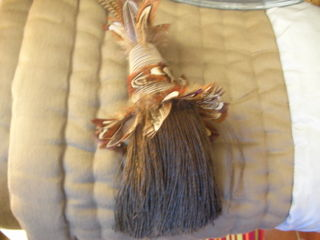 Feathers_trimming